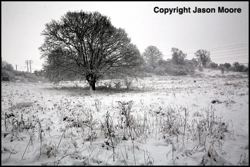 Landscape Photography Swindon