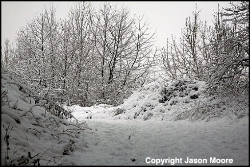 Snow covered landscape between Chiseldon and Swindon in Wiltshire.