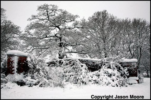 Snow covered landscape between Swindon and Chiseldon in Wiltshire.